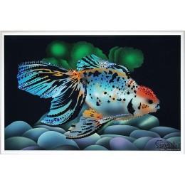 Золотая рыбка-Оранда