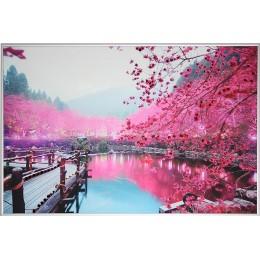 Цветущая сакура 2