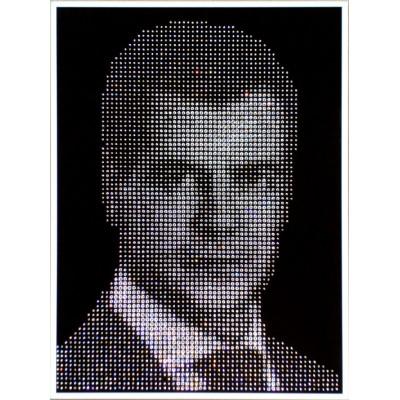 Портрет Д.А. Медведева