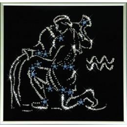 Звездный водолей