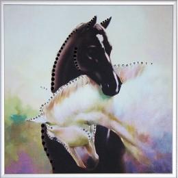 Инь-ян в год лошади ч/б
