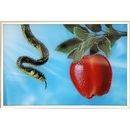 Эдемское яблоко